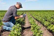 Programske mjere: Razvoj poljoprivrede, šumarstva i ruralnog prostora